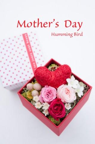 20130116-DSC_7694_mothersday
